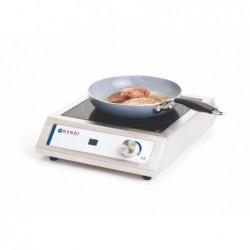 Kuchenka Indukcyjna MODEL 3000